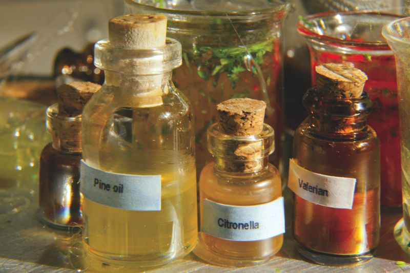 You are browsing images from the article: Mini Olfactory Lab in MUSEUM TO SCALE 1/7