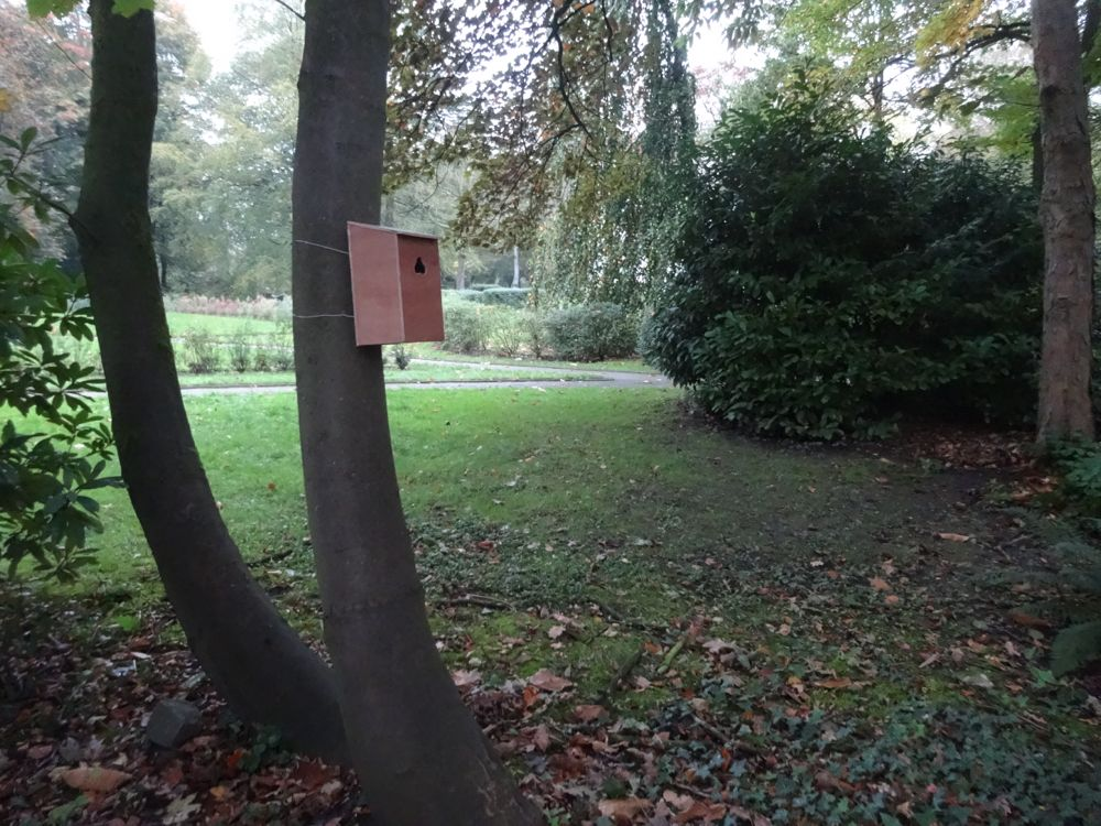 You are browsing images from the article:  'Nose Houses' in the exhibition 'Van de sokkel'