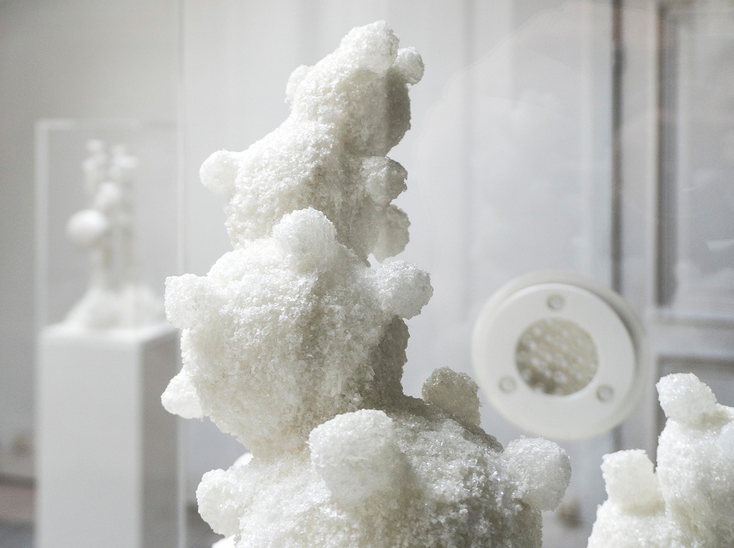 You are browsing images from the article: SALT FLOWERS IN ECCE HOMO