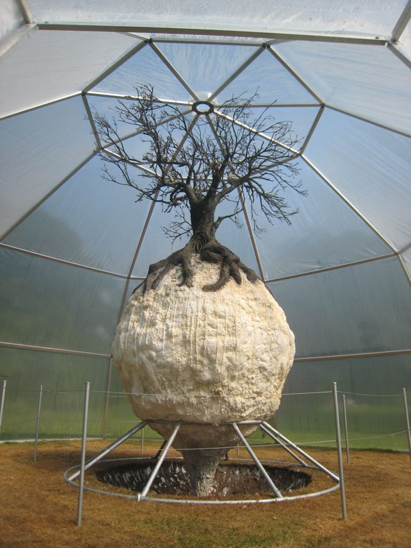 You are browsing images from the article: PTDB-Tree Virus in the exhibition 'EXOTEN'